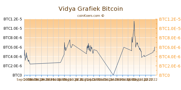 Vidya Grafiek 6 Maanden